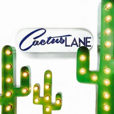 Cactus Lane.jpg