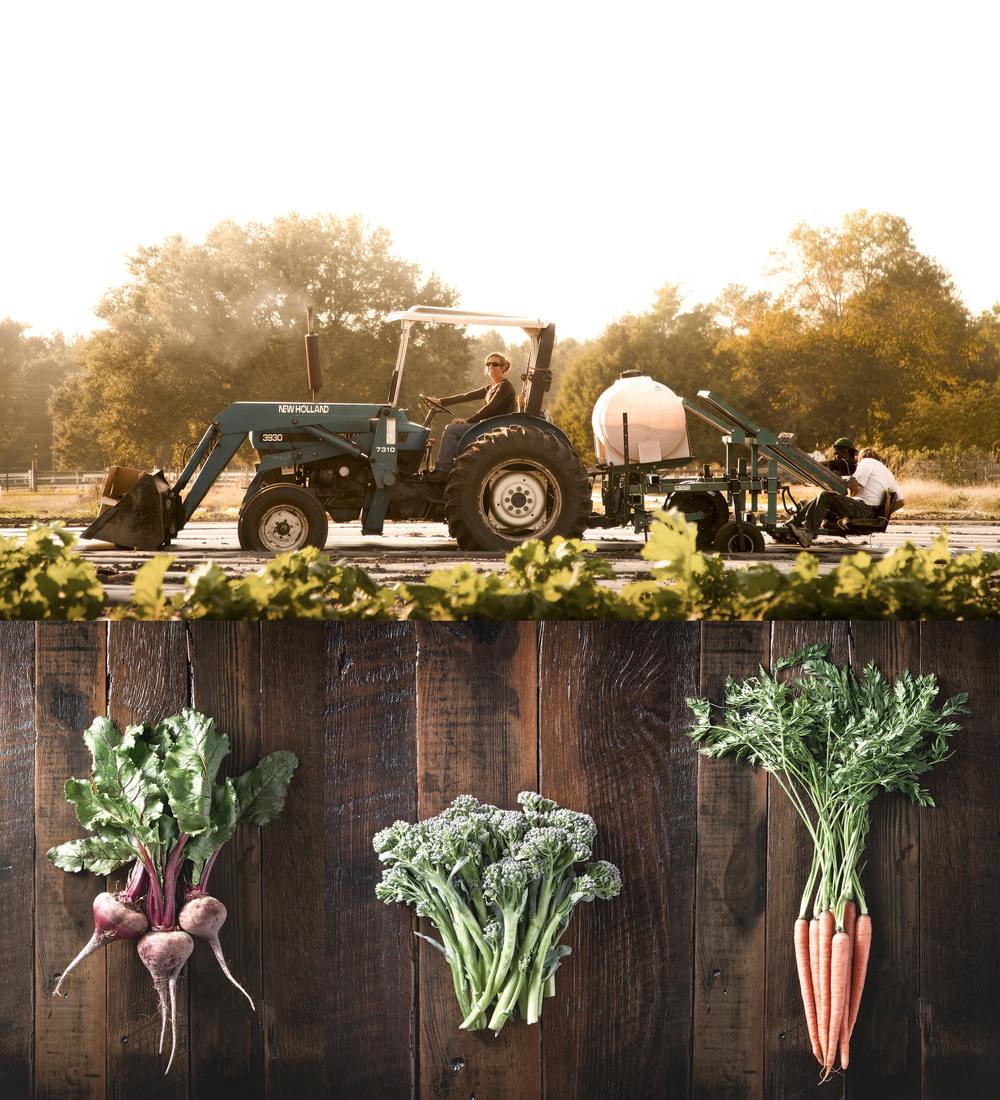 farm to table food photography