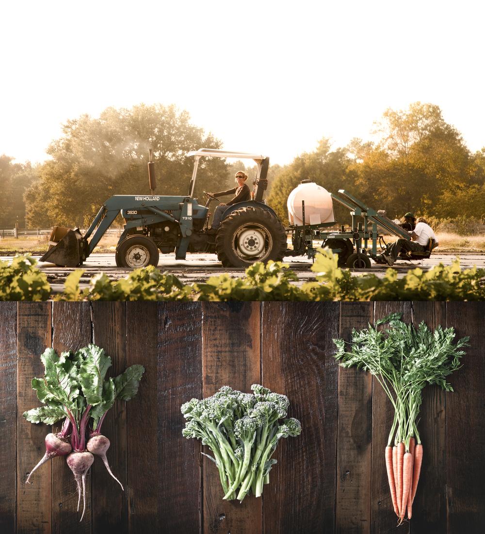 sq_farm_combo.jpg