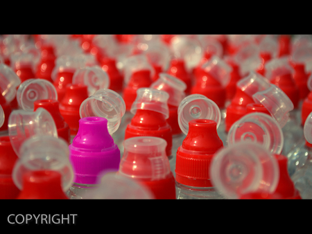 PLASTIC BOTTLES by Nick Fisher.jpg