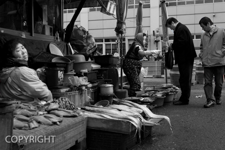 RAW FISH MARKET by Dario Turchi.jpg