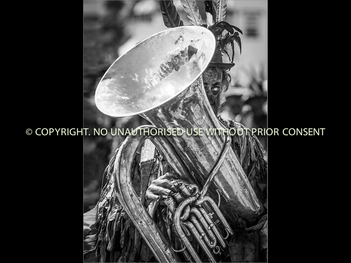 CARNIVAL BRASS by Jamie White.jpg