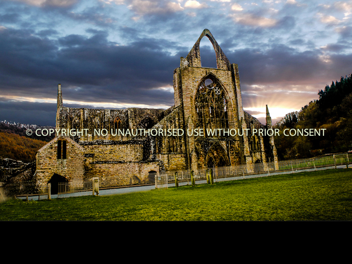 TINTERN ABBEY a BY Mark Jones.jpg