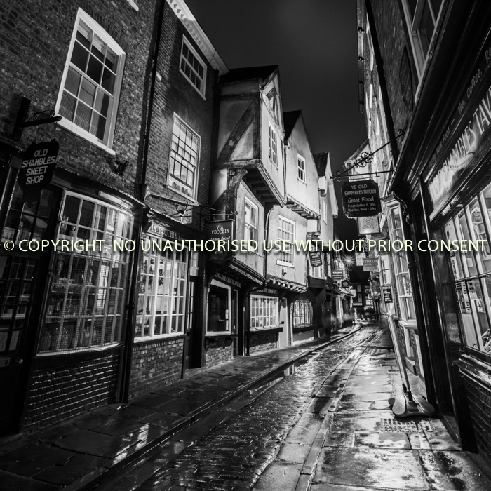 SHAMBLES AFTER THE RAIN by Jamie White