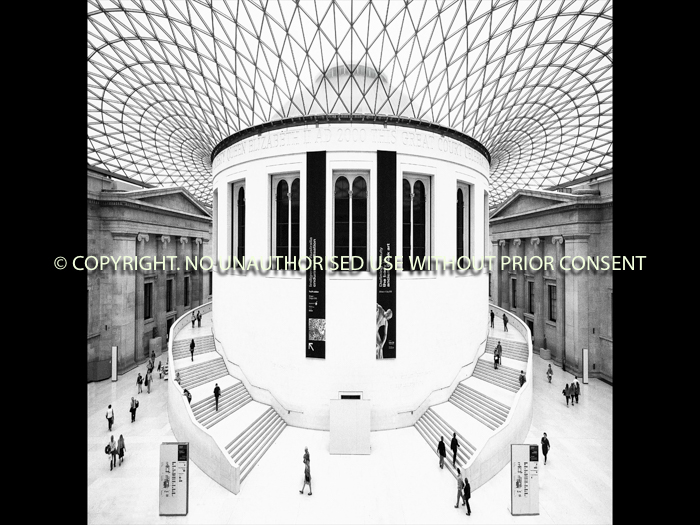 THE GREAT COURT by Sue Vaines.jpg