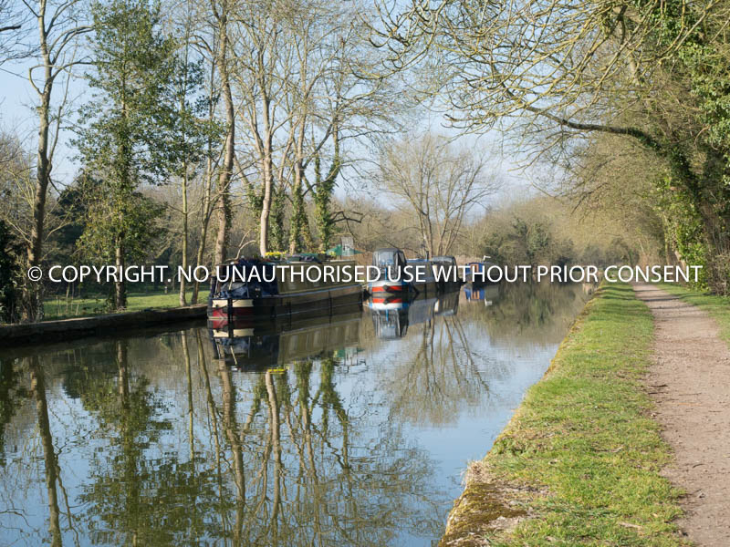 WINTER CANAL TRIO by Mike Newman.jpg