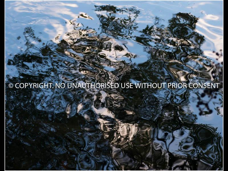 FLATFORD MILLRACE - DUSK by Christine Peel.jpg