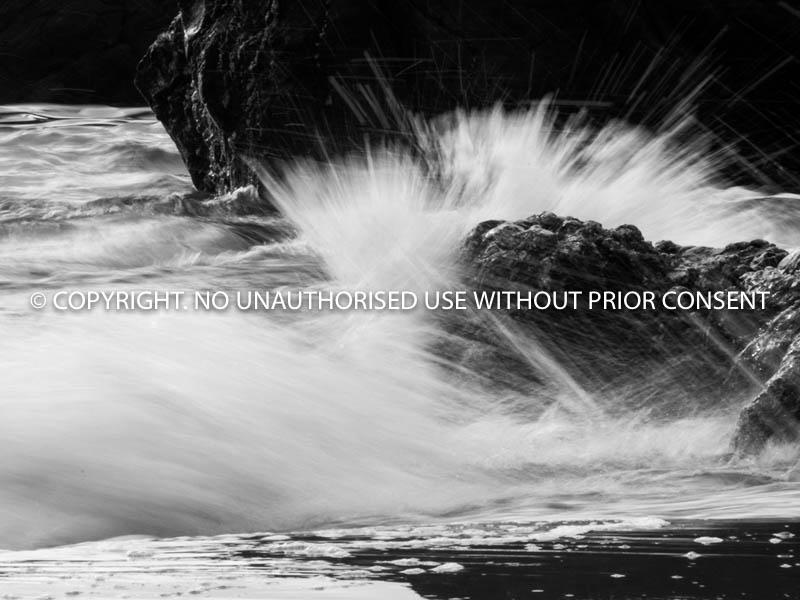 SEA SHORE by Peter Westacott.jpg