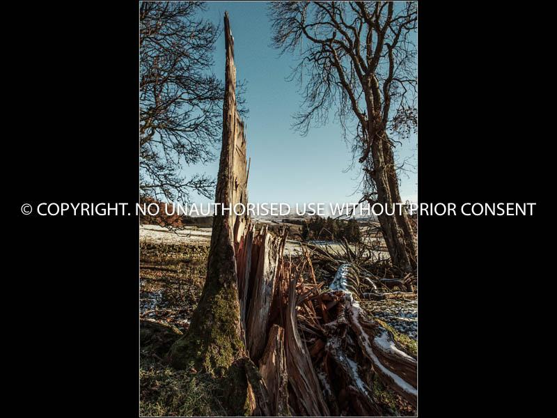KINDROGAN by Hugh Robinson.jpg