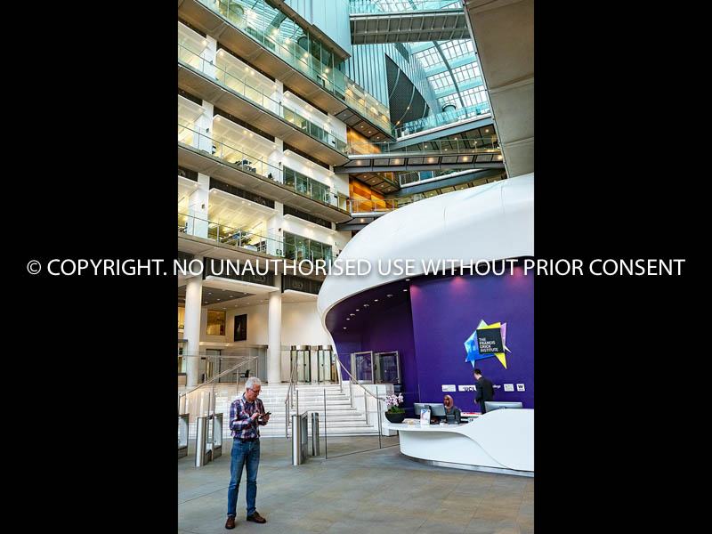 FRANCIS CRICK INSTITUTE by Clive Williams.jpg