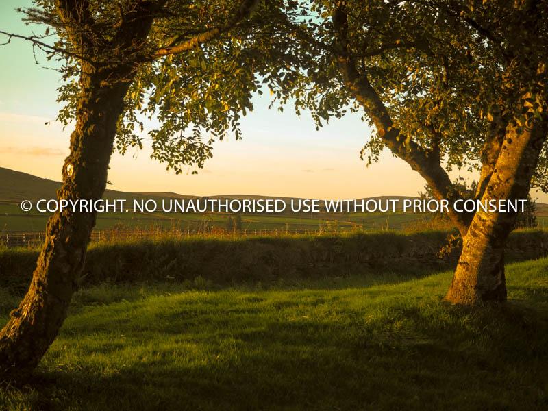 NEVER MISS A SUNSET by U Gavin.jpg