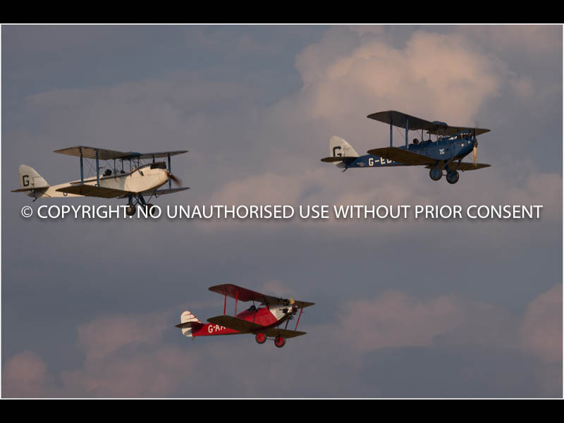 MOTH'S AT OLD WARDEN by Brian Munday.jpg