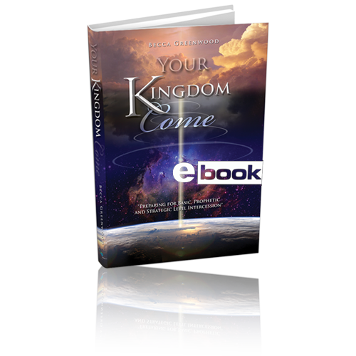 Your Kingdom Come eBook