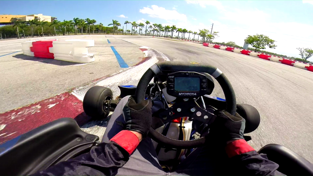 karts and palm trees, Homestead-Miami Speedway