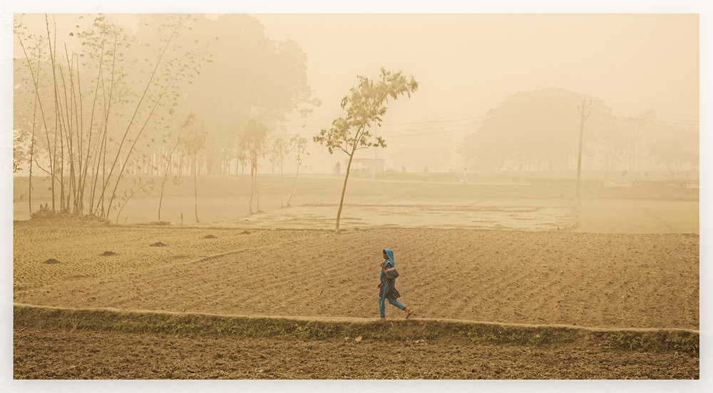 Across the fields, Rangpor, Bangladesh