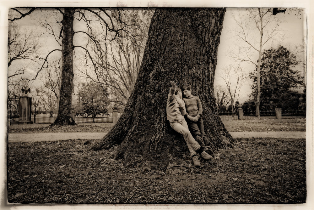 Brothers and the tree, Westover Plantation