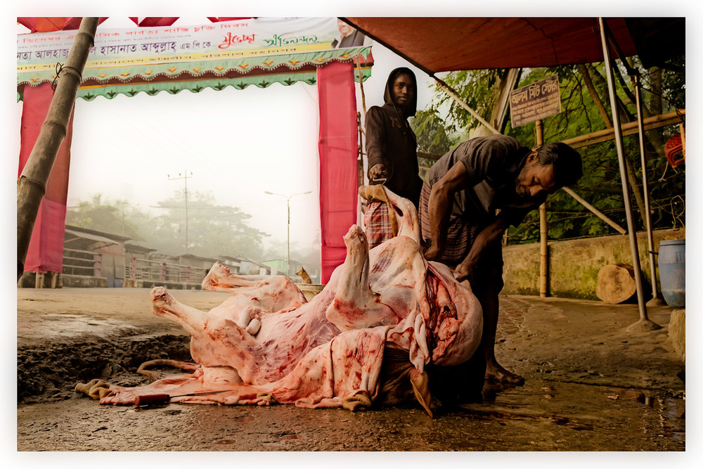 Butchering on the sidewalk, Barisal, Bangladesh