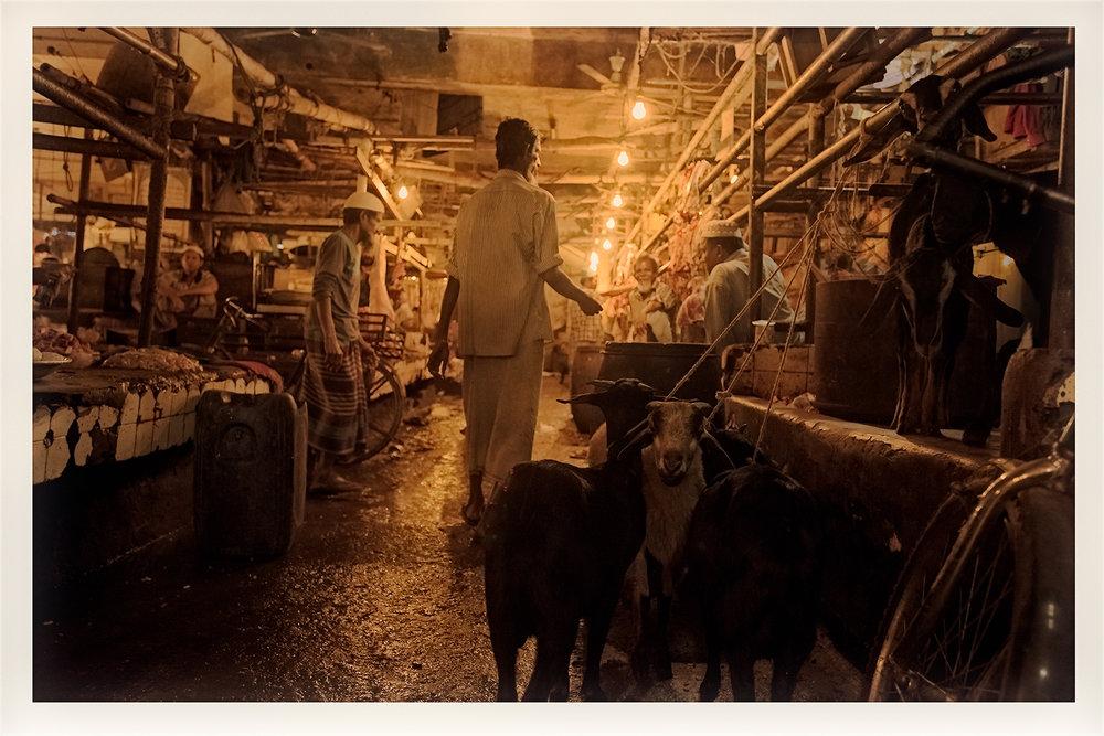 Slaughter house, Dhaka, Bangladesh