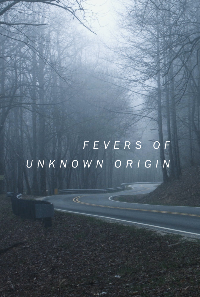 """Fevers of Unknown Origin // 2016 6 minutes (looping) // color Borrowing and combining techniques from modern contemplative cinema, radio plays, the hard-boiled detective genre, and Victorian ghost stories, """"Fevers of Unknown Origin"""" is a looping experimental film about a strange manuscript found buried in the mountains. Its pages tell the story of a mysterious illness, a reluctant detective, and a case of psychic possession."""