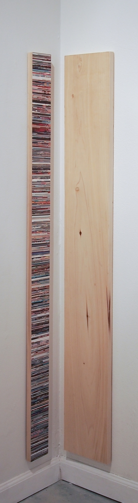 """Chub, Chub""  2014  Gloss gel medium, photo clippings on wood"