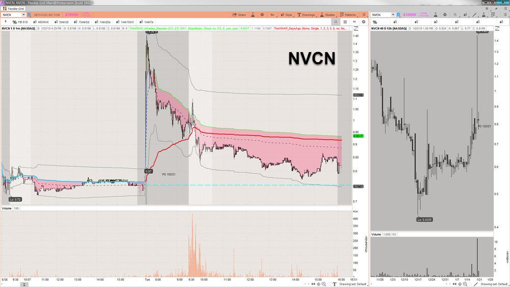2019-01-22_16-29-49 NVCN.jpg