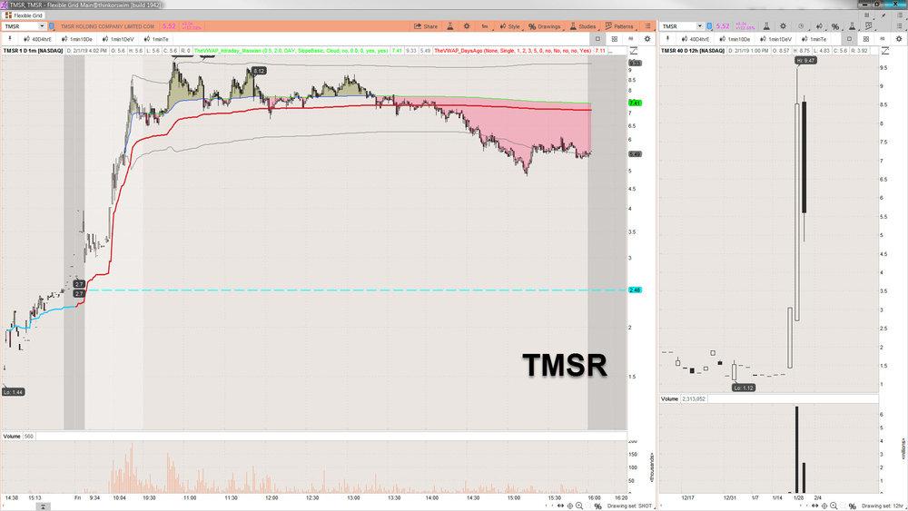 2019-02-01_16-04-10 TMSR.jpg