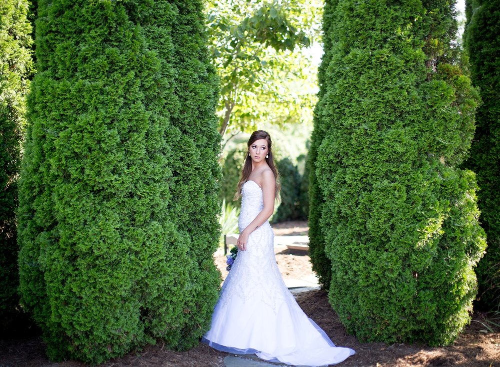bridal portraits between trees