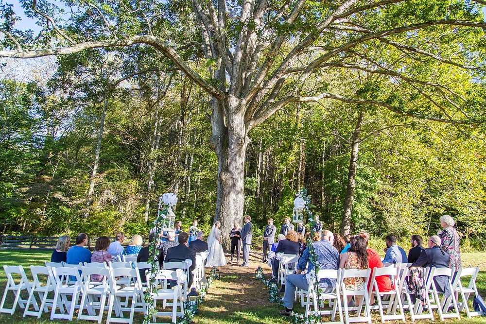 big oak tree wedding