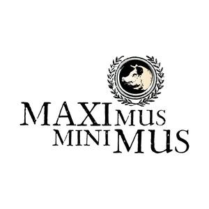 MAXIMUS-1.jpg
