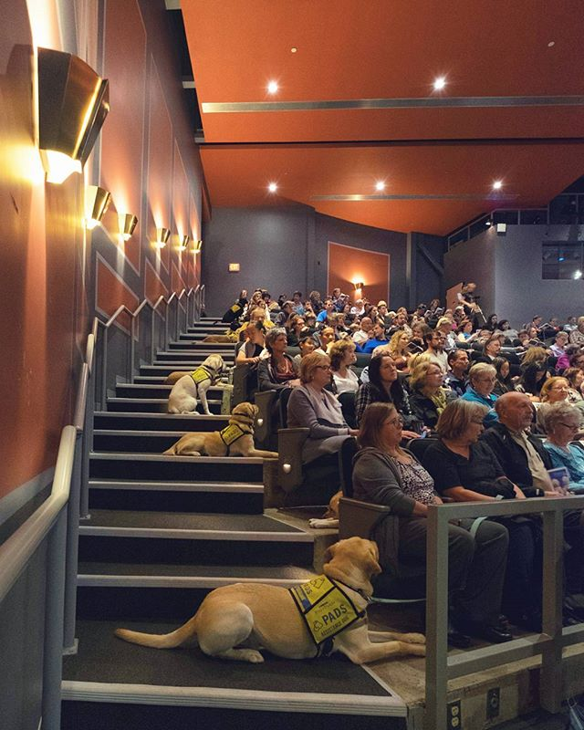 As dog lovers, we were proud to be able to spend Sunday volunteering to shoot some video for @padsdogs. This was their assistance dog graduation ceremony where many freshly trained dogs were handed over (after almost 2 years of hard work from pups, raisers, and trainers) to their grateful and loving homes. If you haven't heard of Pads go check them out and consider donating or volunteering for such a great organization!