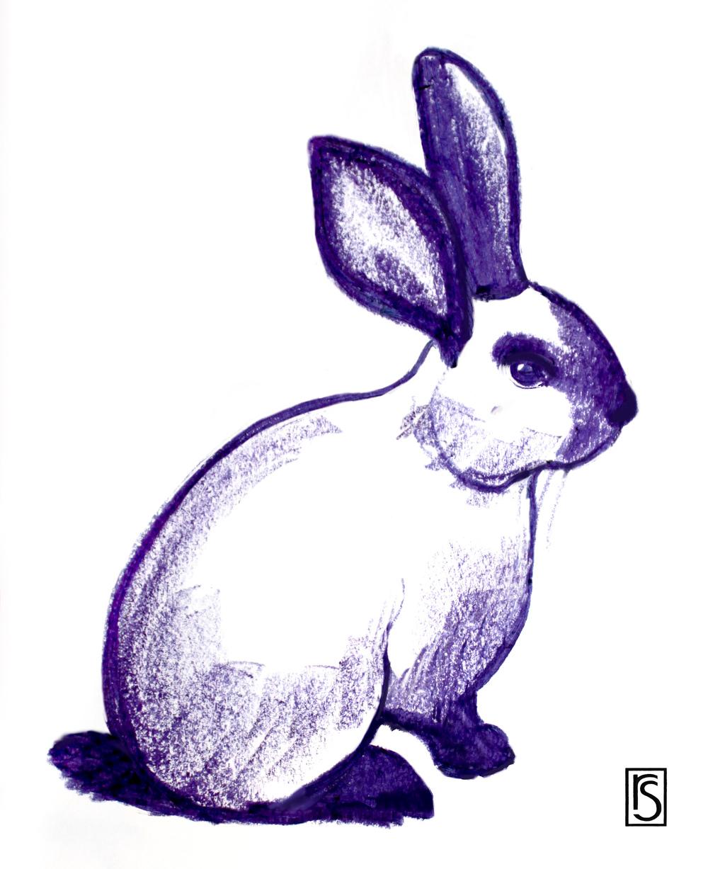 Simplicity bunny