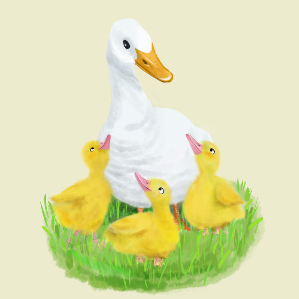 Mother_Duck.jpg