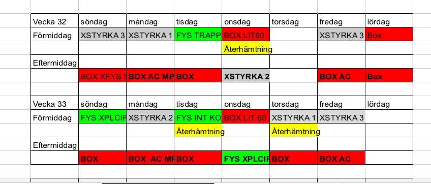 Typisk 2 veckors träningsplanering var boxning har sitt 5-6 pass i veckan och Fys / Styrka varieras.