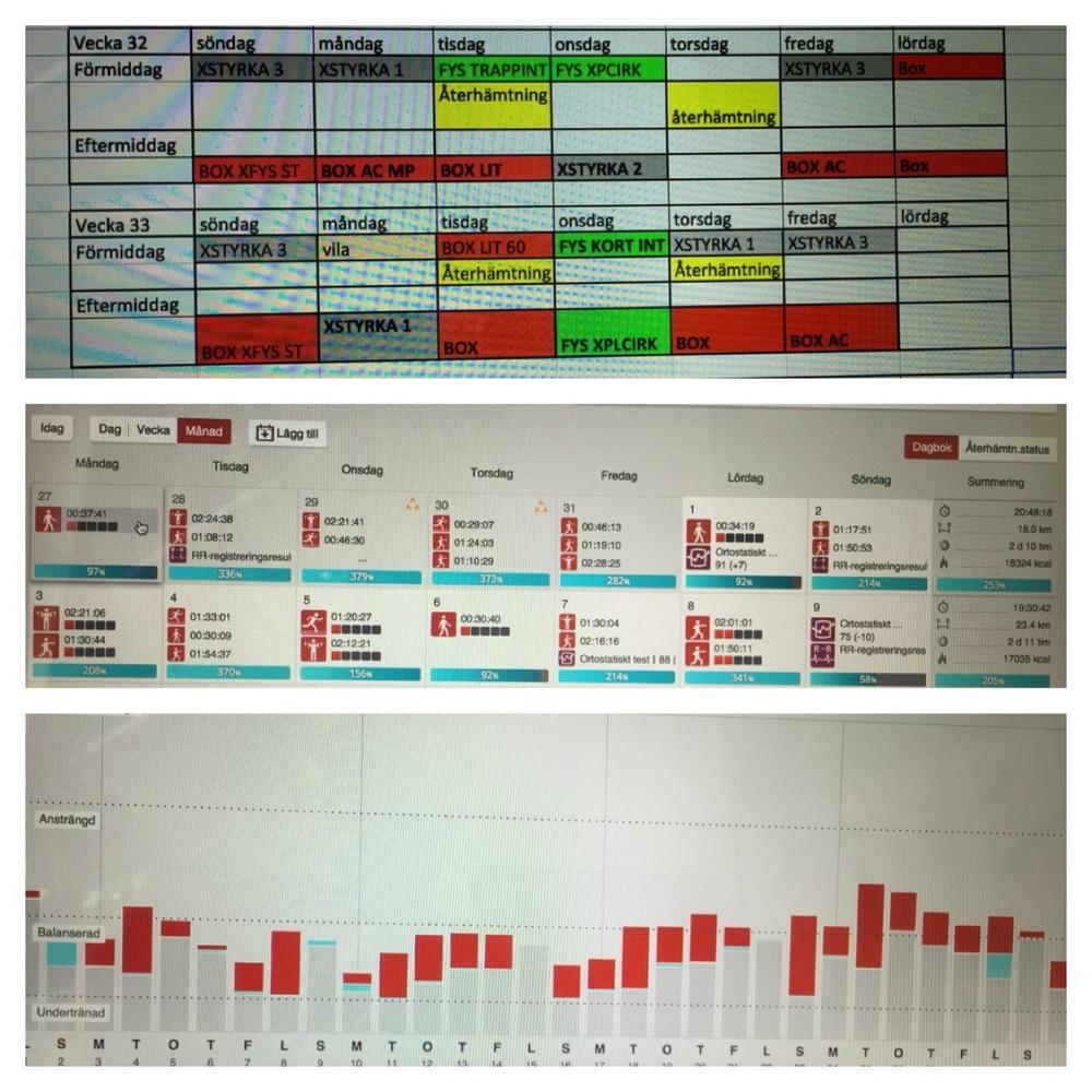 I bilden överst kan du se veckoschema , mittenbilden är träningsdagbok där du kan se intensiteten, pulsen , kalori -och träningstiden. Längst ner syns återhämtningen.