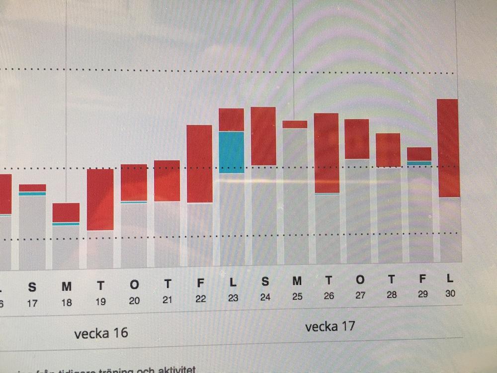 Här ser man i intessivitet ökning som är typiskt toppnings vecka . En rejäl upphöjt tränings intensitet och volym.