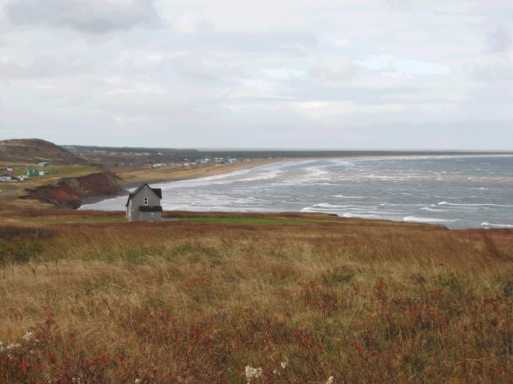 Field at Cliff_Magdalen Islands_CA.jpg