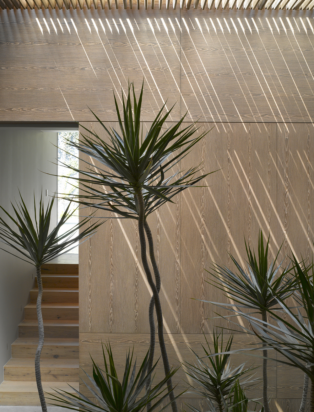 54d416d8e58ece20b6000046_the-barrancas-house-ezequielfarca-architecture-design_casa_barrancas_ezequielfarca_16.jpg