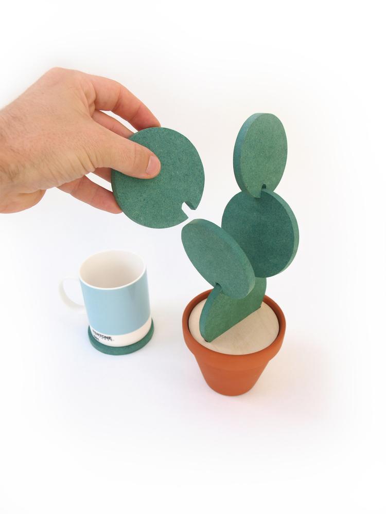 Cacti7.jpg