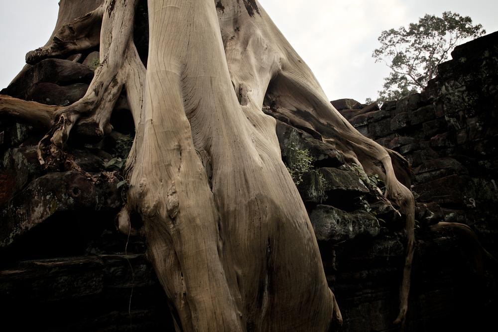 cambodia_IVB_10.jpg
