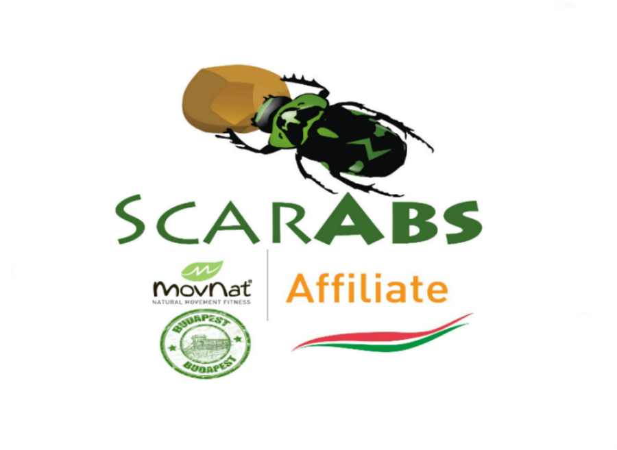 ScarAbs MovNat Budapest
