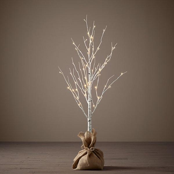 3ft-birch-tree-5715-0041.jpg