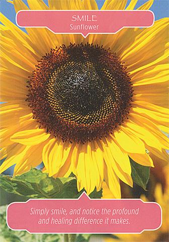 smilesunflower.jpg
