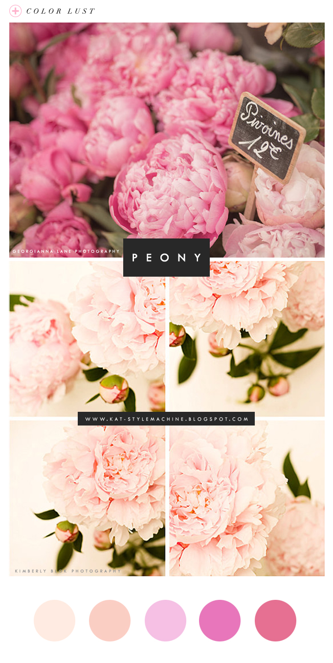 Color Lust | Peony Pink