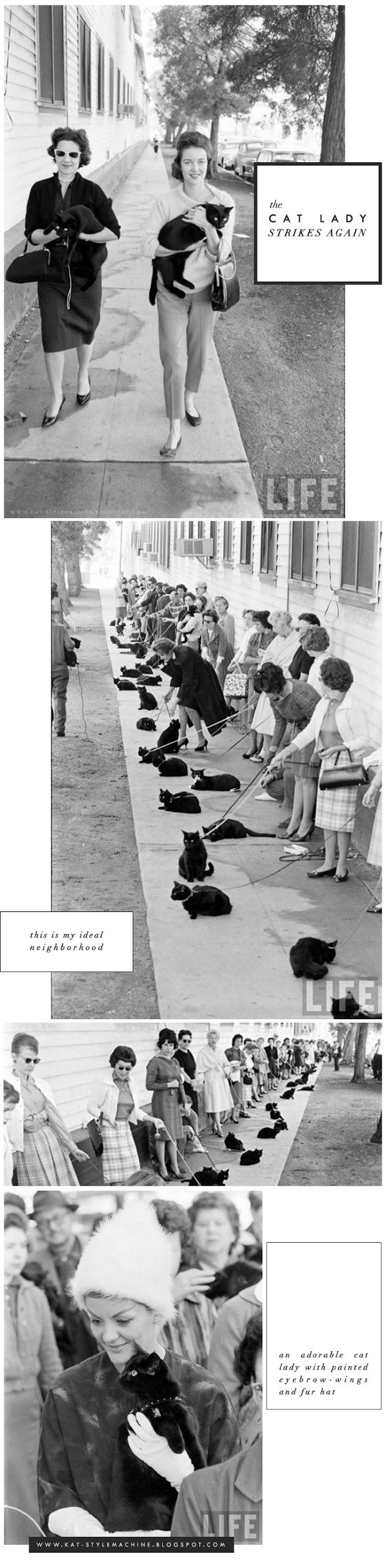 Cat Ladies 1961 Hollywood