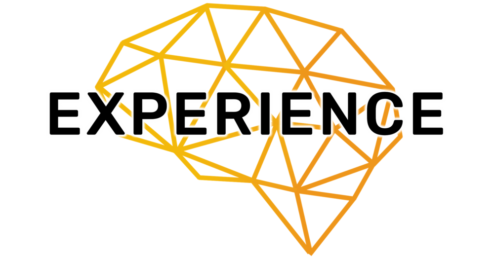 Experience.png
