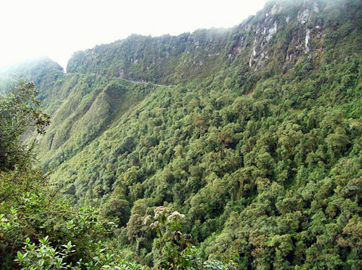 Photo from  Altimetrias de Colombia .