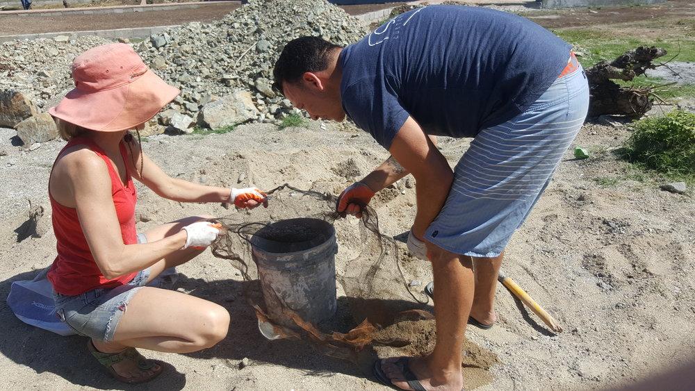 Sifting sand.