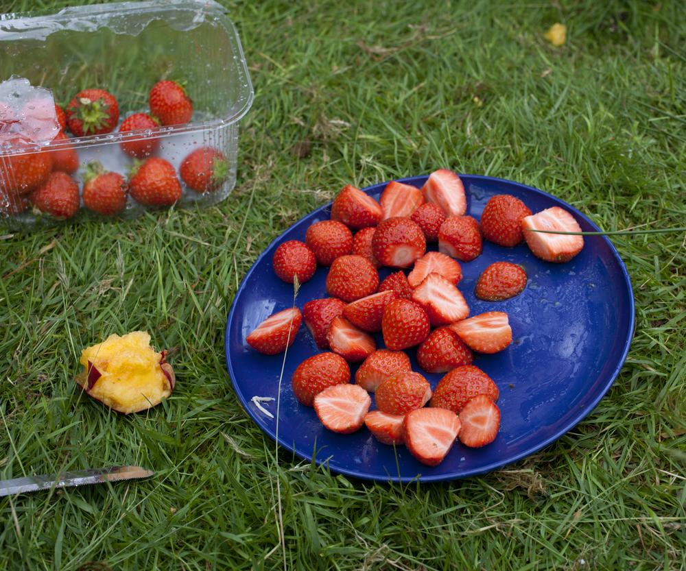 15_20120707_Cumbria_0076.jpg