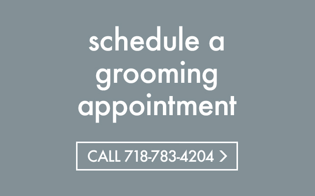 schedule grooming appointment