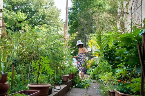 Green Oases in the City — Tadej Znidarcic